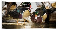 Winter Visitors - Wood Ducks Beach Towel