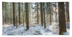 Beach Towel featuring the photograph Winter Wonderland by Hannes Cmarits