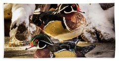 Wintering Wood Ducks Beach Towel