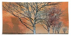 Beach Towel featuring the photograph Winter's Dawn by Shawna Rowe