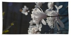 Beach Towel featuring the photograph Wipsy Mini Magnolias by Tina M Wenger