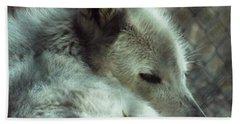 Wolf At Rest Beach Sheet