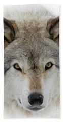 Wolf Portrait Beach Towel