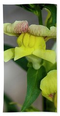 Wonderful Nature - Yellow Antirrhinum Beach Towel