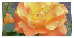 Wonderful Rose Beach Sheet