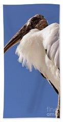 Wonderful Wood Stork Beach Towel by Carol Groenen