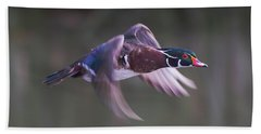 Wood Duck Flight Beach Towel
