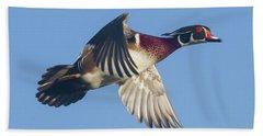 Wood Duck Flying Fast Beach Towel