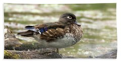 Wood Duck Hen Beach Sheet