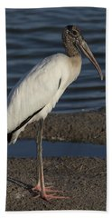 Wood Stork In The Final Light Of Day Beach Sheet