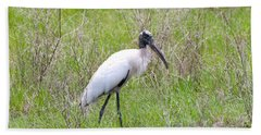 Wood Stork In The Marsh Beach Sheet by Carol Groenen