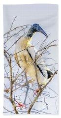 Wood Stork Sitting In A Tree Beach Towel