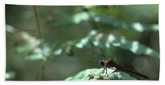 Woodland Dragonfly Beach Sheet