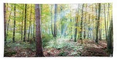 Woodland In Fall Beach Sheet