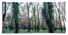 Beach Towel featuring the photograph Woodland by Lana Enderle