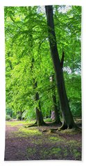 Beach Towel featuring the photograph Woodland Path by Anne Kotan