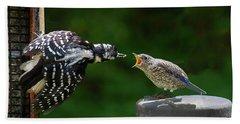 Woodpecker Feeding Bluebird Beach Sheet