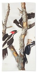 Woodpeckers Beach Towel