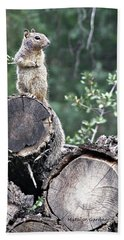 Woodpile Squirrel Beach Towel