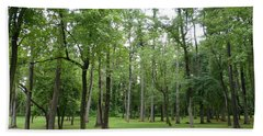 Beach Towel featuring the photograph Woods At Lake Redman by Donald C Morgan