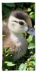 Woody Duckling Beach Towel