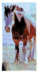 Beach Towel featuring the photograph Workhorse by Cynthia Powell
