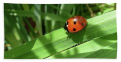 World Of Ladybug 1 Beach Sheet by Jean Bernard Roussilhe