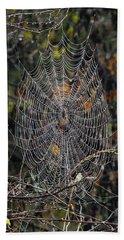 World Of Webs Beach Sheet