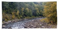 Worlds End State Park Loyalsock Creek Beach Sheet