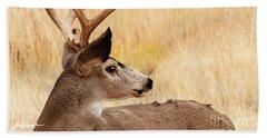 Wyoming Wildlife Beach Sheet