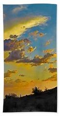Y Cactus Sunset 10 Beach Sheet