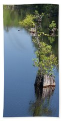 Beach Towel featuring the photograph Yawkey Wildlife Refuge - Cat Island by Suzanne Gaff