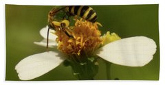 Yellow And Black Bee On Flower. Beach Towel