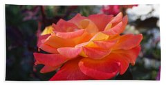 Yellow And Pink Rose Beach Towel