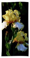 Yellow And White Irises 6681 H_2 Beach Sheet
