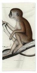 Yellow Baboon, Papio Cynocephalus Beach Towel