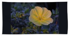 Beach Towel featuring the photograph Yellow Beach Evening Primrose by Marie Hicks
