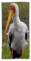 Beach Towel featuring the photograph Yellow-billed Stork by Betty-Anne McDonald