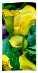 Yellow Calla Lilies Beach Sheet