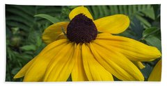 Beach Sheet featuring the photograph Yellow Coneflower by Arlene Carmel