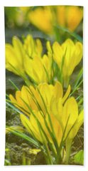 Yellow Crocuses Close Up Beach Towel