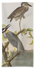 Yellow Crowned Heron Beach Towel by John James Audubon