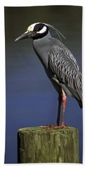 Yellow-crowned Night Heron Beach Sheet by Sally Weigand