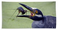 Beach Towel featuring the photograph Yellow Crowned Night Heron  by Savannah Gibbs