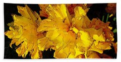 Beach Towel featuring the photograph Yellow Daffodils 4 by Jean Bernard Roussilhe