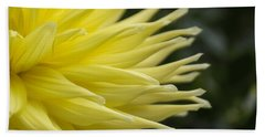 Yellow Dahlia Petals Beach Sheet