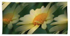 Beach Sheet featuring the photograph Yellow Daisies by Smilin Eyes  Treasures