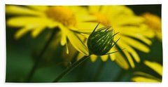 Yellow Daisy Bud Beach Towel