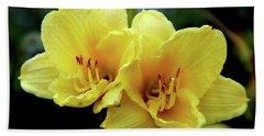 Yellow Daylilly 0204 H_2 Beach Towel