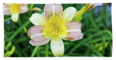 Beach Towel featuring the photograph Yellow Daylily by D K Wall